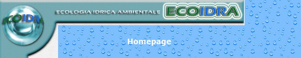 T-HOMEPAGE